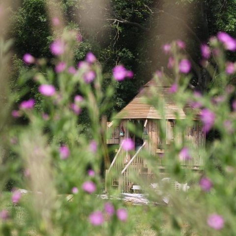 Website, email marketing and SEO for The Dandelion Hideaway